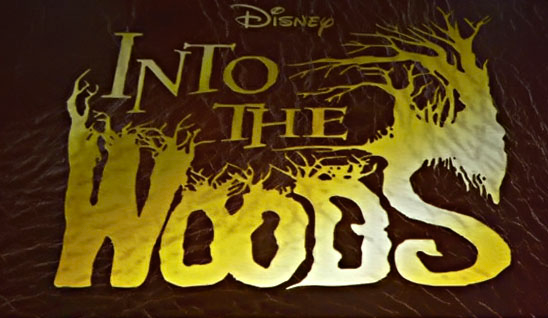 Into The Woods: Concerns About the Upcoming Hollywood Production