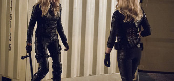 Arrow 3×13 Review: Canaries