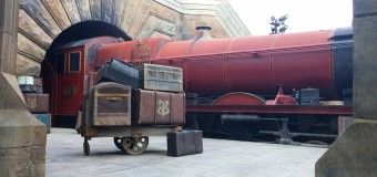 The Great Wizarding (World) Debate: Hogsmeade vs. Diagon Alley