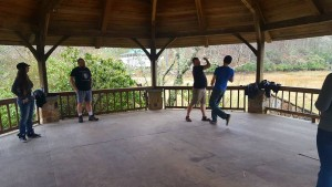 Stage combat lessons at the gazebo