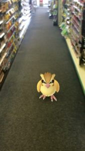 Pokemon GO Pidgey The Geekiary