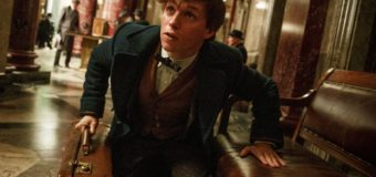 Fantastic Beasts Without Newt Scamander? Say It Isn't So!