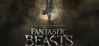 Fantastic Beasts and Where to Find Them: A Fun Frolic with Some of That Harry Potter Magic