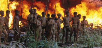 All-Female Lord of the Flies? Someone Failed English Lit