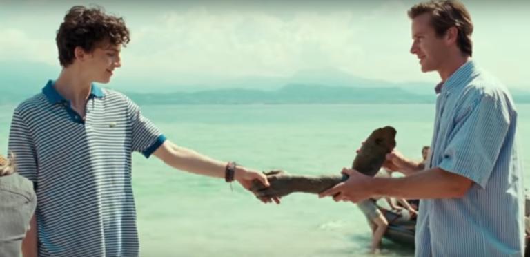 Armie Hammer Terrified of Filming Gay Love Scenes in Call