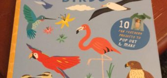 'Paper Birds' Book Review: Let's Make 10 Feathery Friends