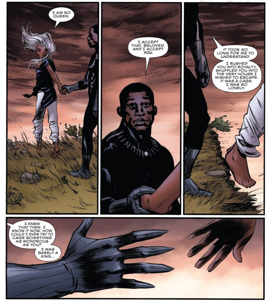 Black Panther 15 Page 22 Coates Storm