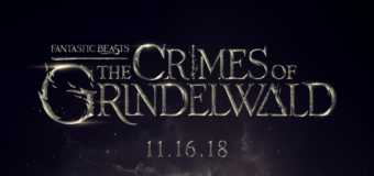 Fantastic Beasts: The Crimes of Grindelwald Gets Release Date and Cast Image!
