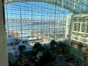 magfest gaylord national harbor