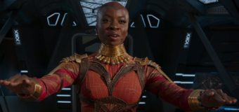 Okoye vs Wonder Woman – Fans Make Two Female Warriors Battle Online