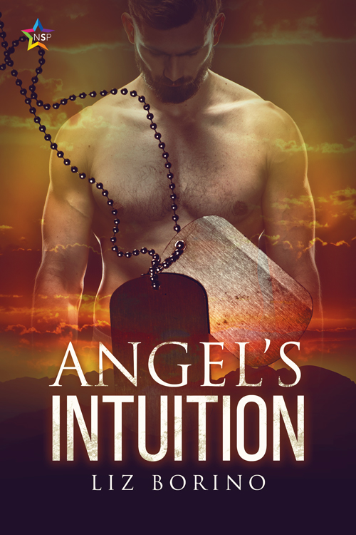 Angel's Intuition book NineStar Press gay
