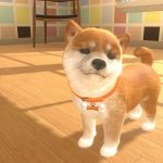 Little Friends Dogs & Cats Nintendo Switch