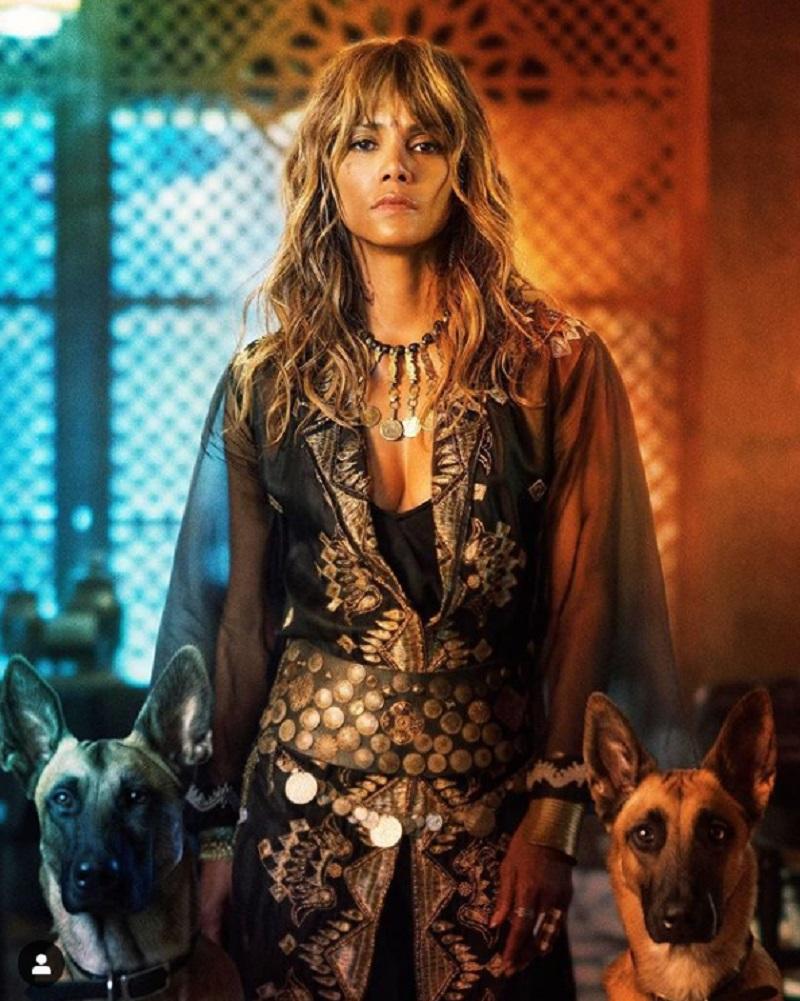 John Wick 3 Halle Berry Sofia Dogs