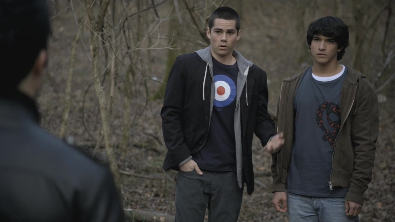 Sterek in Teen Wolf's pilot episode