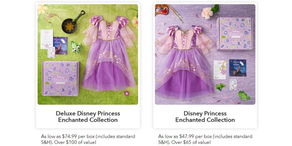 Disney Subscription Boxes