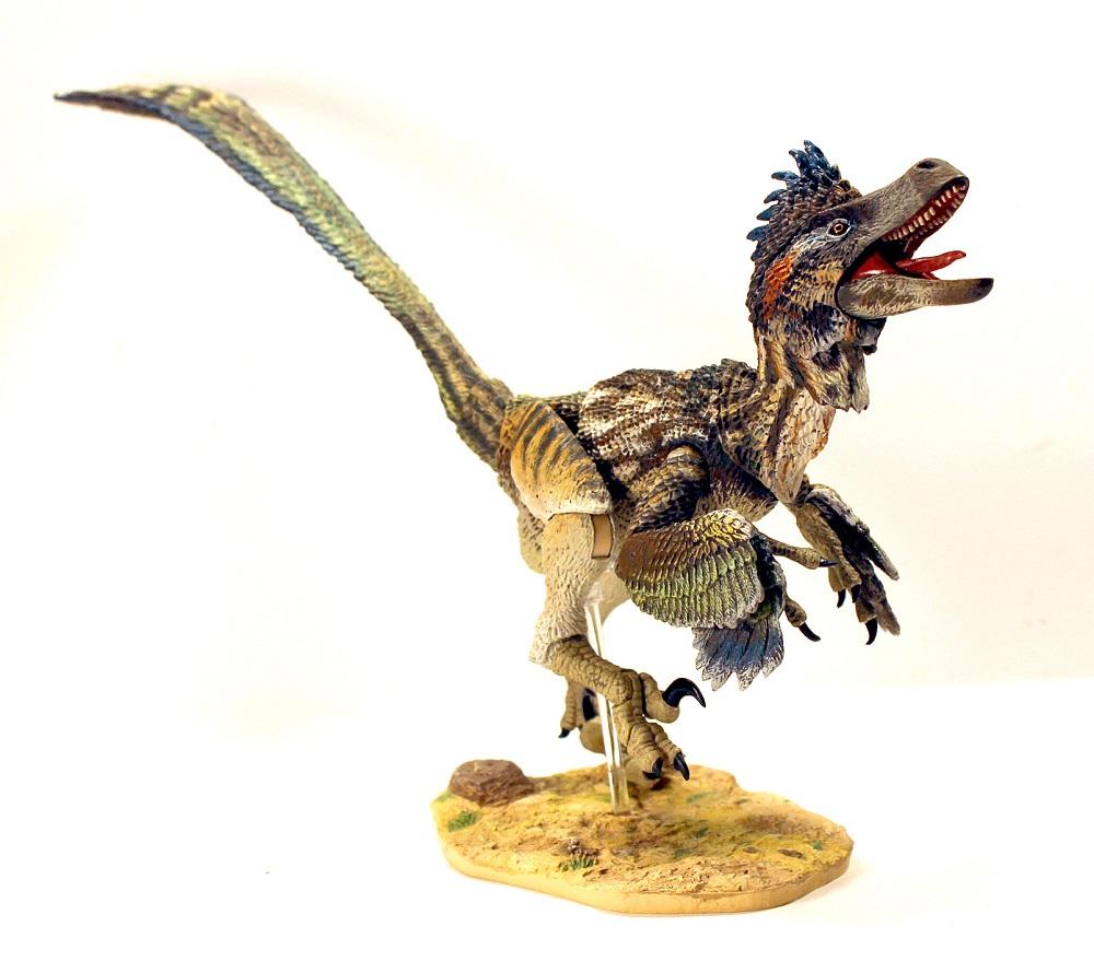 Saurornitholestes langstoni