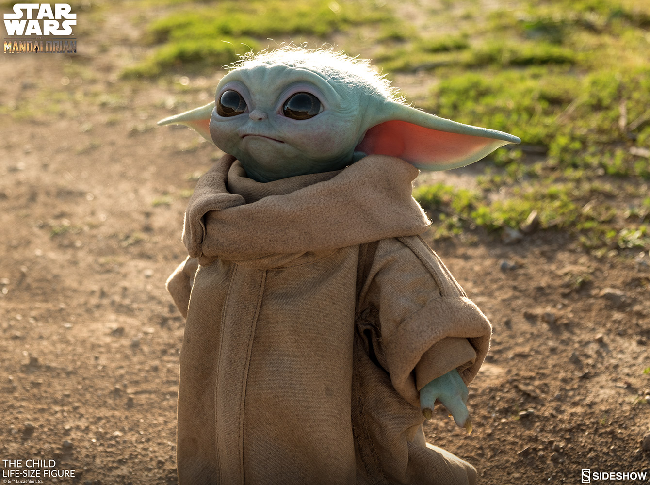 Baby Yoda Sideshow