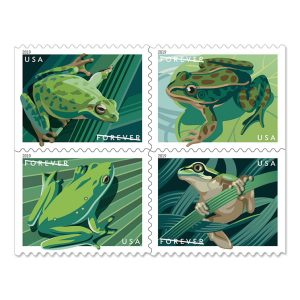 A grid of four frog stamps, all of them are in a lovely green monochrome with leafy backgrounds