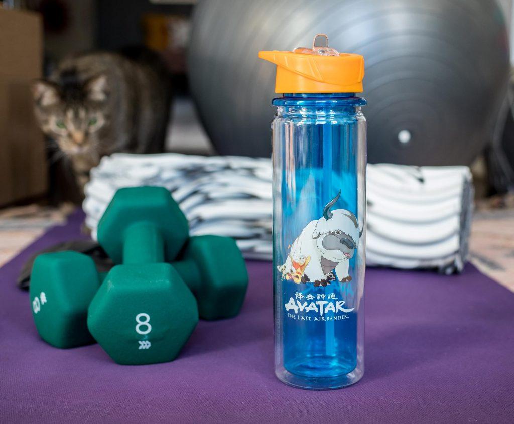 Last Airbender home goods Aang and Appa water bottle